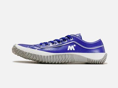 spm-161-blue